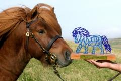 pony-trophy-min