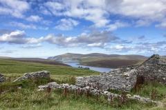 Shetland Landscape